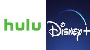 Hulu Disney Plus
