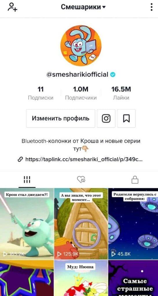аккаунт Смешариков